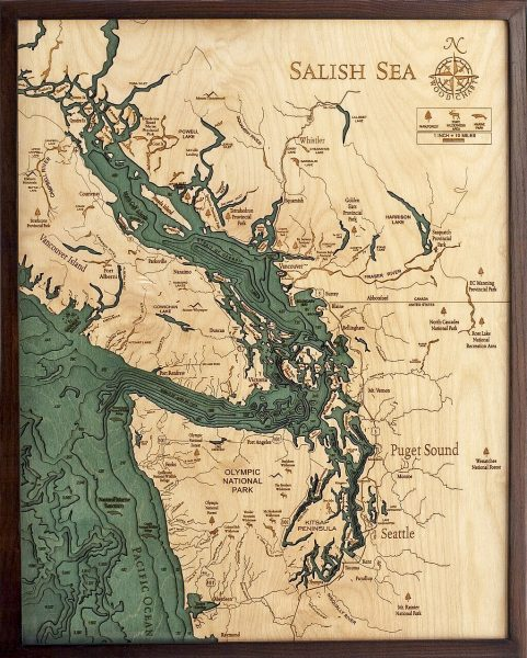 Bathymetric Map Salish Sea, Washington