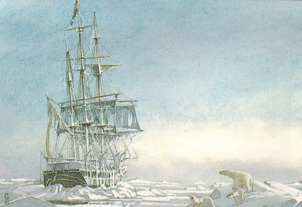 William Gilkerson Limited Edition Print - Whaler 'Young Phoenix'