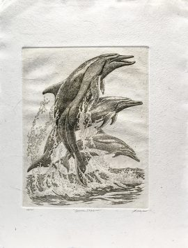 J.D. Mayhew Limited Edition Print - Spinner Dolphins