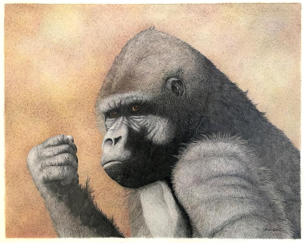 Nancy Charles Original Drawing - Gorilla