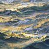 Charles Vickery - Golden Seas