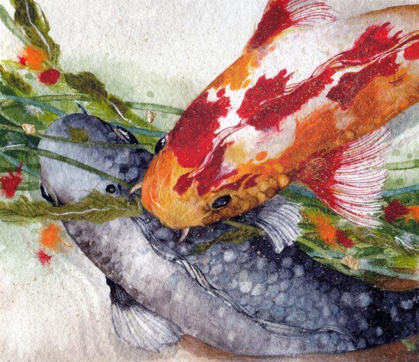 Beki Killorin - Kandy Koi