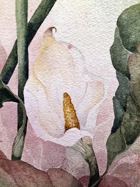 Beki Killorin Original Watercolor Lily