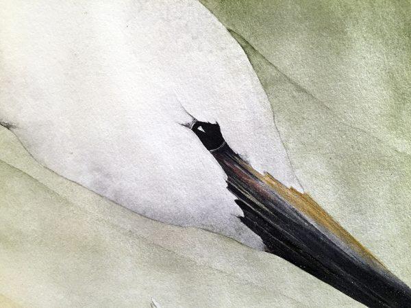 Beki Killorin OBeki Killorin Original Watercolor Sojournersriginal Watercolor Sojourners