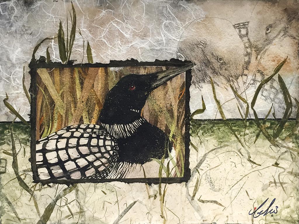 Beki Killorin Original Watercolor - Loon Study