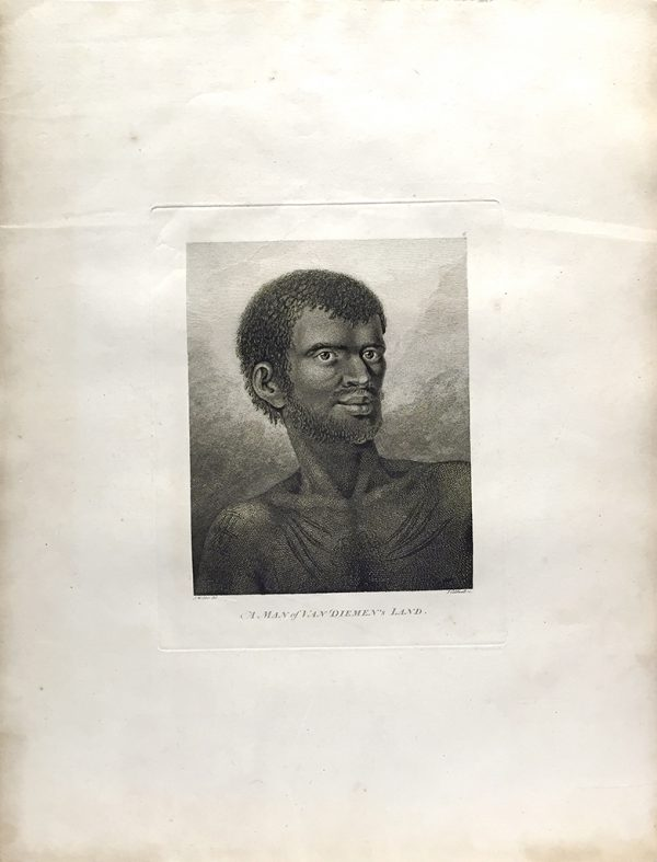 Cook Engraving - A Man of Van Dieman's Land