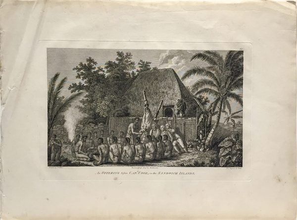 Cook Engraving - An Offering Before Captain Cook in the Sandwich Islands