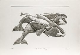 J.D. Mayhew Limited Edition Print - Bowheads and Beluga Whales