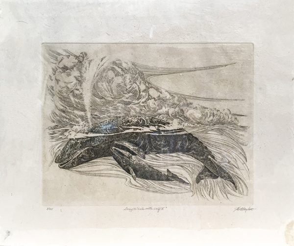 J.D. Mayhew Limited Edition Print - Gray Whale with Calf II