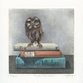 Eileen Sorg - Higher Education
