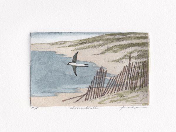 Frank Kaczmarek - Lone Gull
