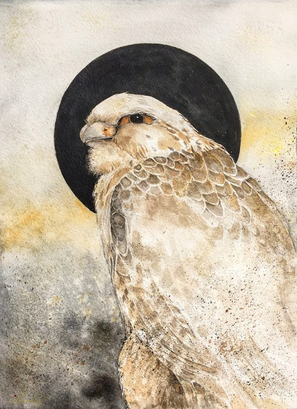 Beki Original Watercolor - Hunter Falcon Original